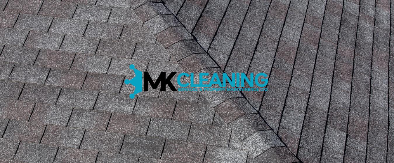 Roof Cleaning Softwashing Pressure Washing Gutter